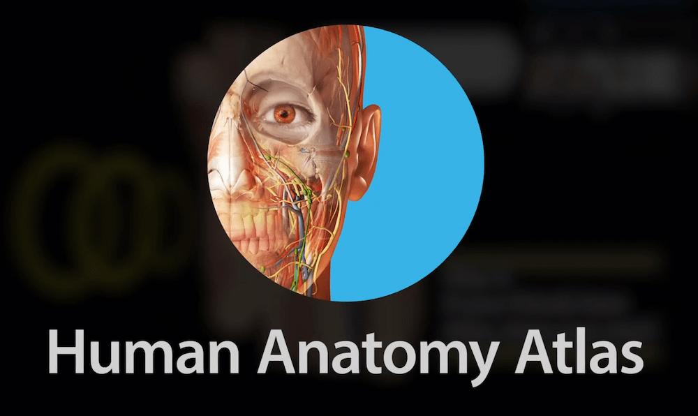 Human Anatomy Atlas 2021 APK download