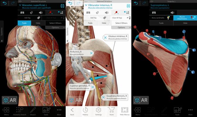 Human Anatomy Atlas 2021 features